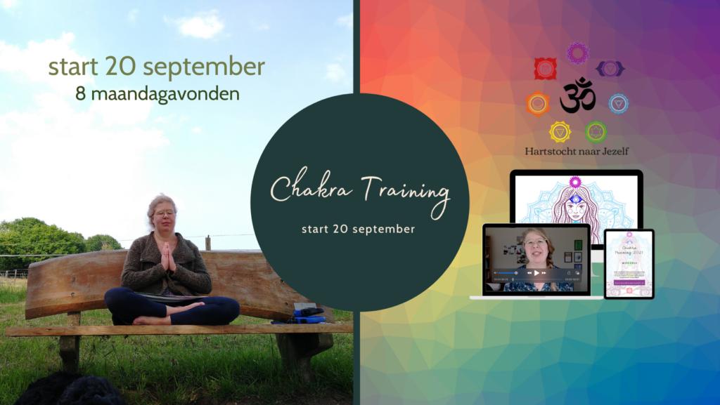 Online Chakra Training